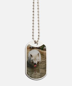 Thirsty White Wolf Dog Tags