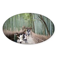 Bamboo Forest Decal