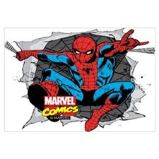 Spiderman Ripped Wall Art