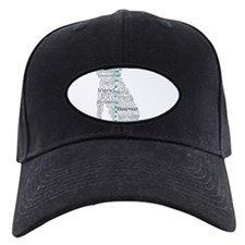 4 Paws Gray Teal Baseball Hat