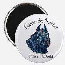 """Bouvier des Flandres Rule 2.25"""" Magnet (10 pack)"""
