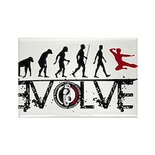 EVOLVE JKD Magnets