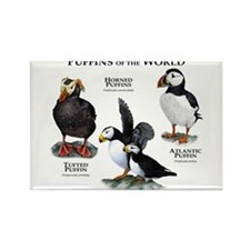 Puffins of the World Rectangle Magnet