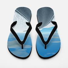 Ice Road Flip Flops