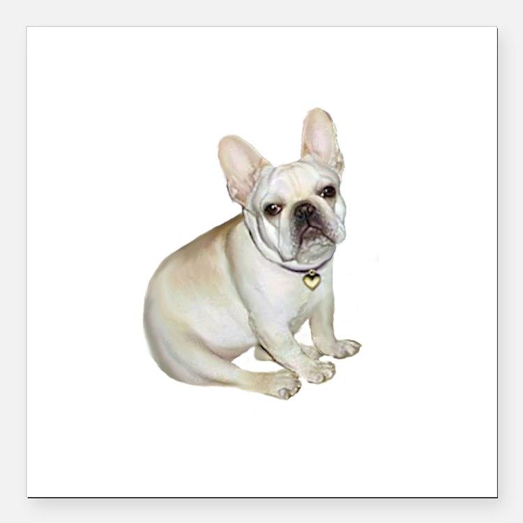 "French Bulldog (#2) Square Car Magnet 3"" x 3"""
