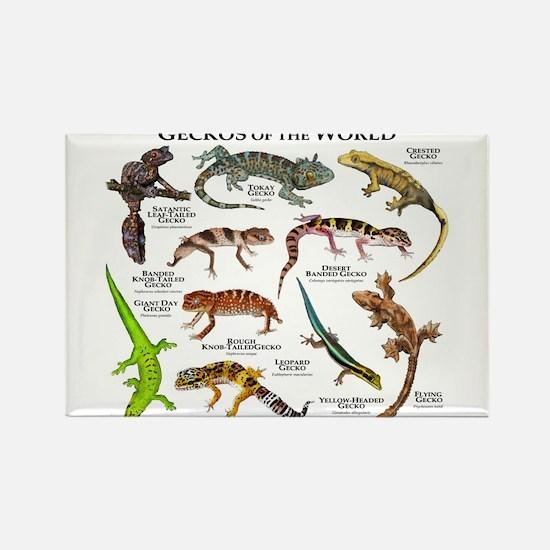 Geckos of the World Rectangle Magnet