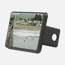Cayucos Pier View Hitch Cover