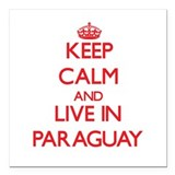 Flag paraguay Car Magnets