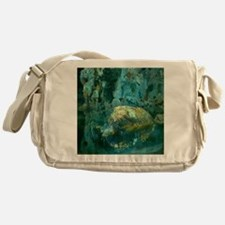 Joaquin Mir The Rock in the Pond Messenger Bag