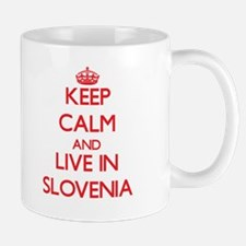 Keep Calm and live in Slovenia Mugs