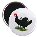 Spanish Cock and Hen Magnet