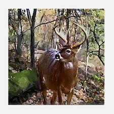 Woodland Buck Deer Tile Coaster