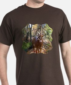 Woodland Buck Deer T-Shirt