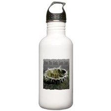 When The Gods Came Down Sports Water Bottle