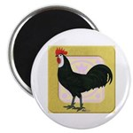 Whitefaced Spanish Rooster Magnet