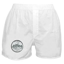 New Jersey State Quarter Boxer Shorts