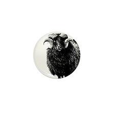 Black Ram Mini Button (100 pack)