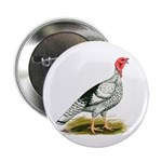 Royal Palm Hen Turkey Button