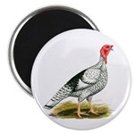 Royal Palm Hen Turkey Magnet