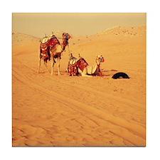 Desert Camels 1 Tile Coaster
