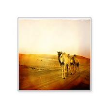 Desert Camels 3 Sticker