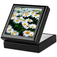 Field of Daisies Keepsake Box
