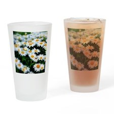 Field of Daisies Drinking Glass