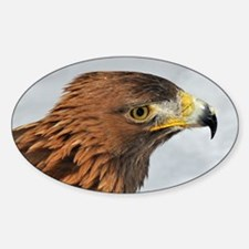 Golden Eagle Decal