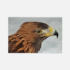 Golden Eagle Rectangle Magnet