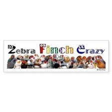 Zebra Finch Crazy Bumper Bumper Sticker
