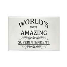 World's Most Amazing S Rectangle Magnet (100 pack)