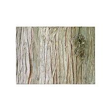 Cedar Bark 5'x7'Area Rug