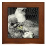 Silkie chicken Framed Tiles
