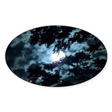 Moon through the trees. Decal