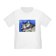 kitties T
