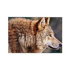 Golden Wolf Rectangle Magnet