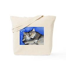 kitties Tote Bag