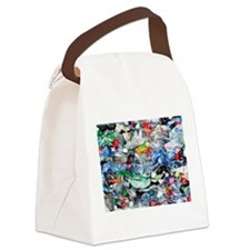 Recycling plastic Canvas Lunch Bag