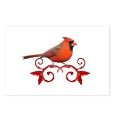 Beautiful Cardinal Postcards (Package of 8)