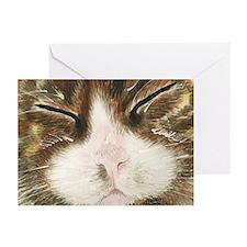 """Sleeping Cat """"Kiki""""Greeting Cards (Pk of 10)"""