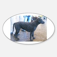 curly coated retriever full Decal