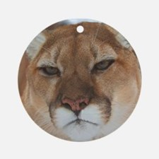 Big Faced Cougar Ornament (Round)