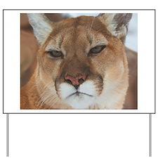 Big Faced Cougar Yard Sign