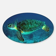 Ocean Turtle Decal