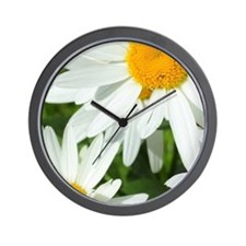 Summer daisies Wall Clock