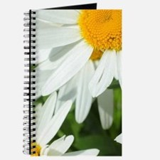 Summer daisies Journal