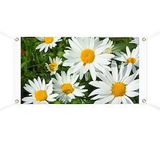 Summer daisies Banner