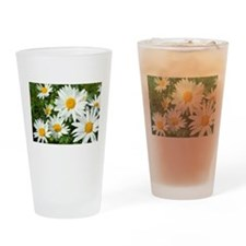 Summer daisies Drinking Glass