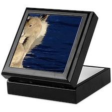 Baby swans Keepsake Box