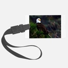Bald Eagle in Pines Luggage Tag